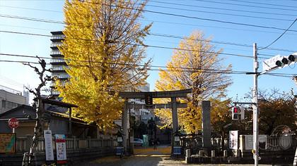 20161202asakusa07